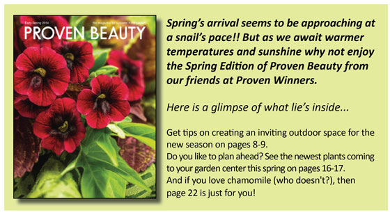 Spring-Proven-Beauty